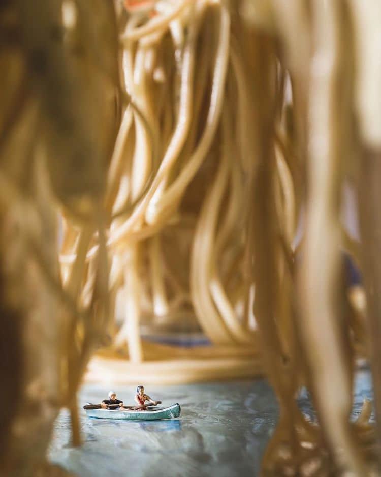 Indoor Nature Photography by Erin Sullivan